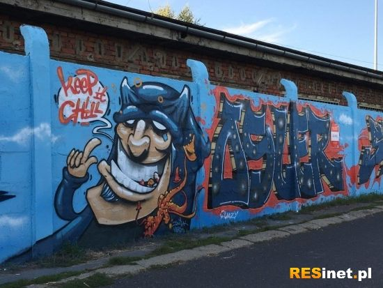 Na drodze prowadzącej na Lisią Górę powstało blisko 100-metrowe graffiti [FOTO] - Aktualności Rzeszów - zdj. 9
